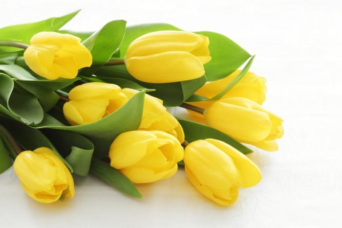 Картинки с днем рождения женщине с тюльпанами желтыми, брату спасибо как